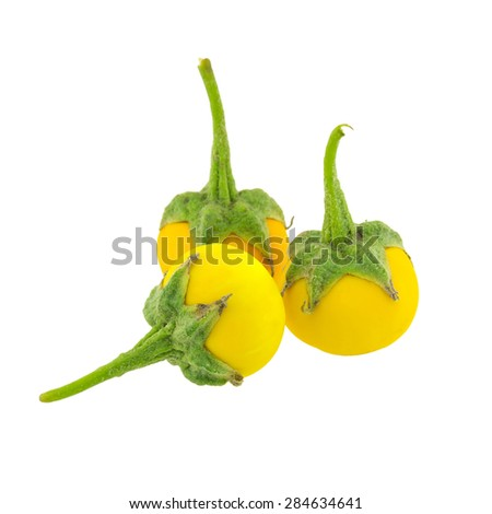 Yellow Eggplant isolated on white background