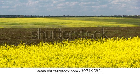Yellow field with brown stripes