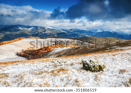 Yellow fields and green trees covered with white snow among the beautiful mountain landscape. Golden autumn time.