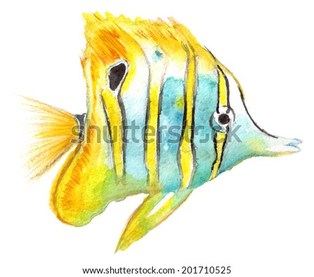 yellow fish on white background - stock photo