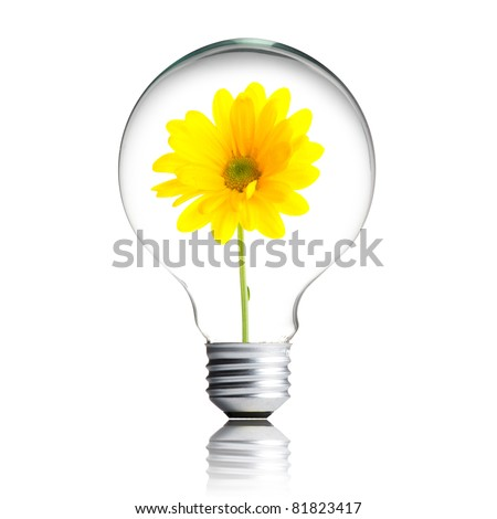yellow flower growing inside the light bulb - stock photo