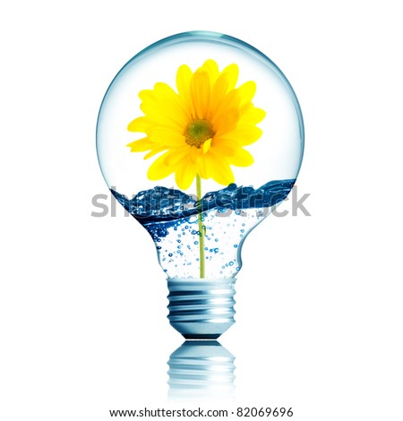 yellow flower growing inside the light bulb fill with water - stock photo