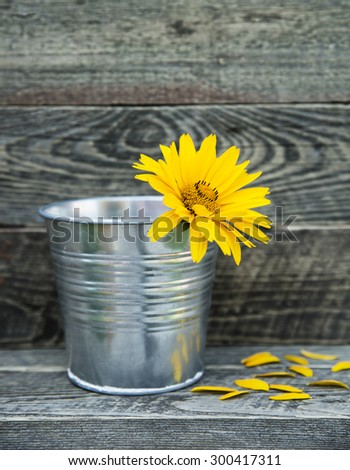 Yellow flower in the bucket.