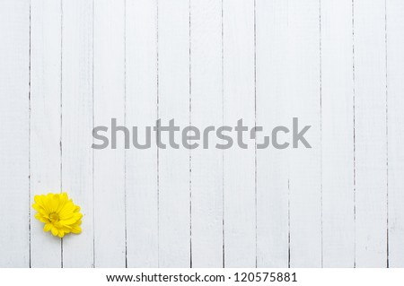 yellow flower, white wood background - stock photo