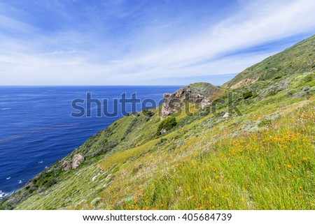 Yellow flowers, green grass, beautiful shimmering blue sea & aquamarine waters, gentle surf, along steep sheer jagged cliffs, the Big Sur Highway, on the California Central Coast, near Cambria CA. - stock photo