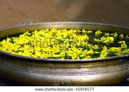 yellow flowers in ancient garden tub with  water - stock photo