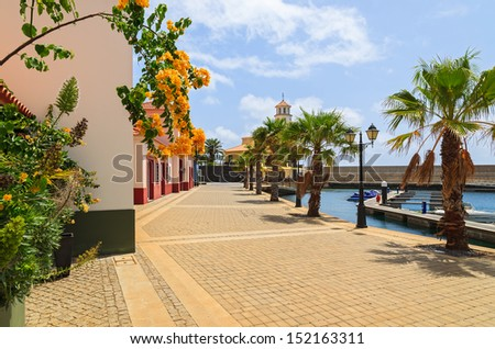 Yellow flowers on promenade with palm trees in marina with boats and yachts and colorful houses, Madeira island, Portugal