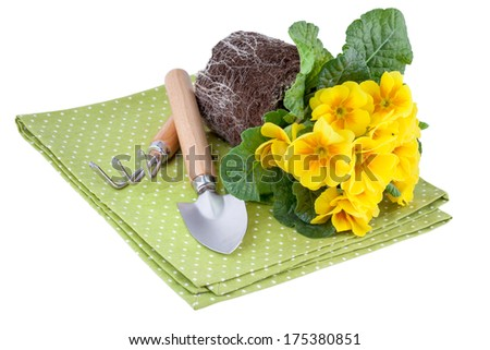 Yellow Flowers with Garden Tools - stock photo