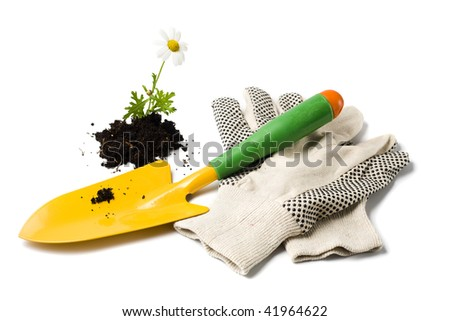 yellow gardener's shovel, gardening gloves and marguerite flower in soil isolated on white - stock photo