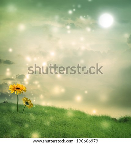 Yellow gerberas in a fantasy hill under the moon - stock photo