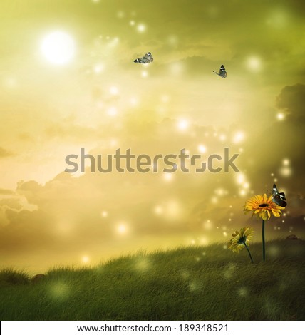 Yellow gerberas with butterflies under the moon in a fantasy hill  - stock photo