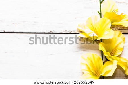 Yellow gladiola flower on a white wooden planks background - stock photo