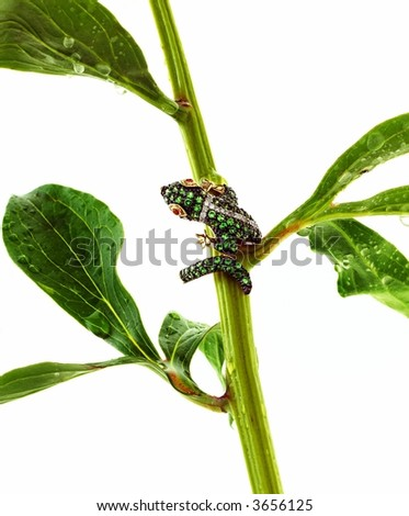 Yellow gold emerald and diamond ring climing on a stem with leaves - stock photo