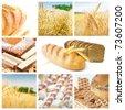 Yellow grain field and bread collage. - stock photo