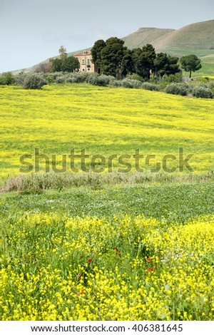 Yellow grass and country house, Sicily, Italy, Europe - stock photo