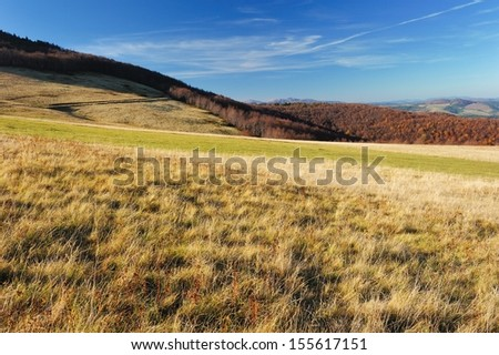 Yellow grass in mountains - stock photo