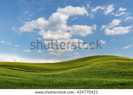 Yellow green rolling field and clouds