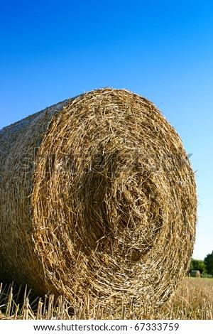 Yellow hay bale under a blu sky - stock photo