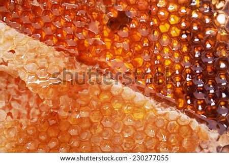 yellow honeycomb covered with wax and fresh honey - stock photo