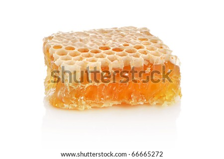 Yellow honeycomb slice on a white background - stock photo