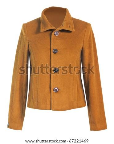 yellow jacket - stock photo