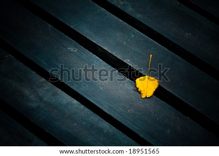 yellow leaf on wooden deck