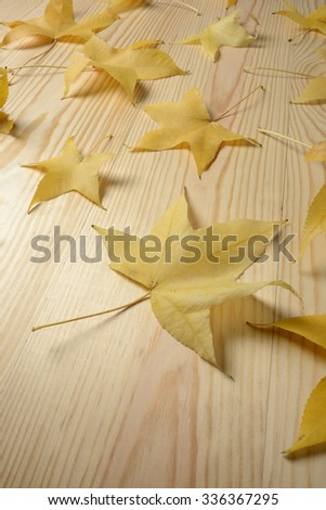 Yellow leaves on the wooden floor