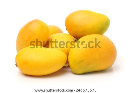 yellow Mango  - stock photo