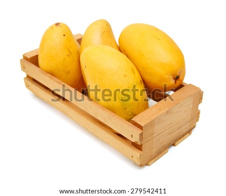 Yellow mango isolated in wooden crate on a white background