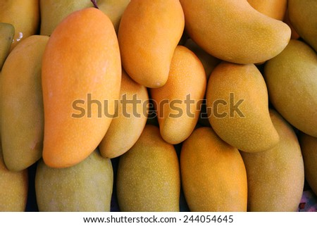 Yellow mango / photography a lot of tropical fruit at market  - stock photo