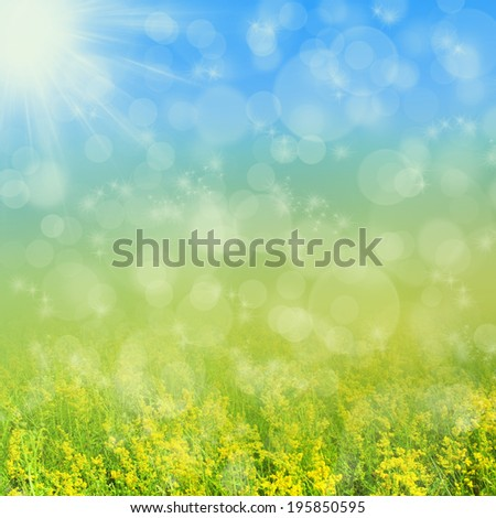Yellow meadow in the summer sun.