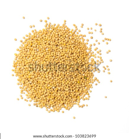 Yellow mustard seeds isolated - stock photo