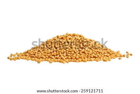 Yellow mustard seeds on a white background