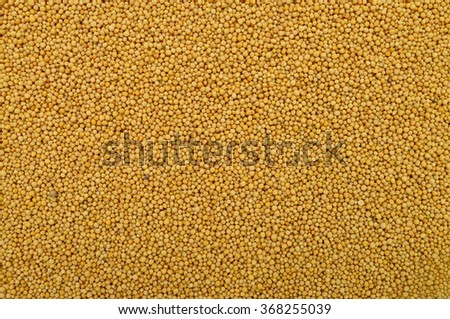 yellow mustard seeds texture food ingredient background
