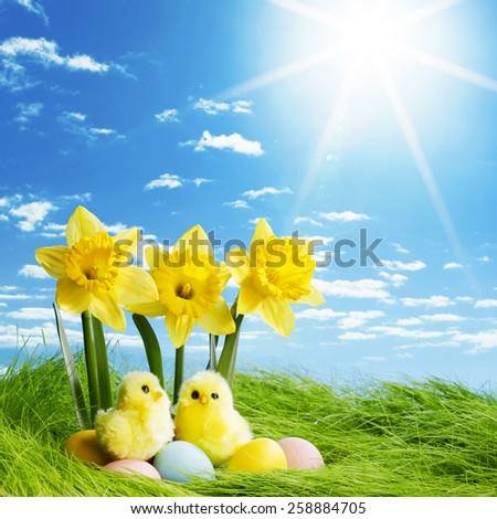 Yellow narcissus flowers and easter eggs on spring grass background - stock photo