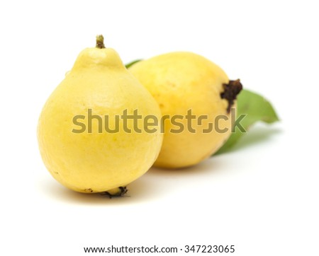 yellow, normally called white, guava fruit isolated on white background - stock photo