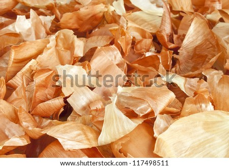 Yellow onion skin background - stock photo