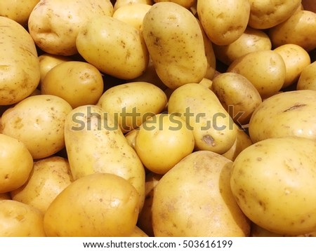 Yellow potatoes texture background