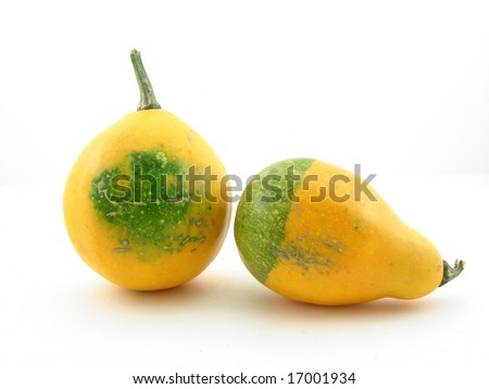 Yellow pumpkins isolated.