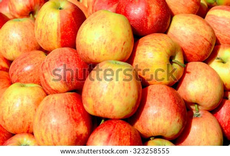 yellow-red sweet and fresh apples, closeup - stock photo