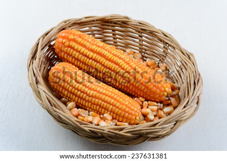 Yellow ripe corn in Wicker basket on white wooden table - stock photo