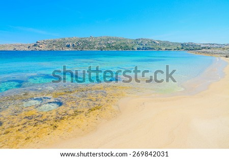 yellow rocks in Capo Testa beach in Sardinia