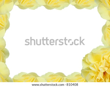 Yellow rose border - stock photo