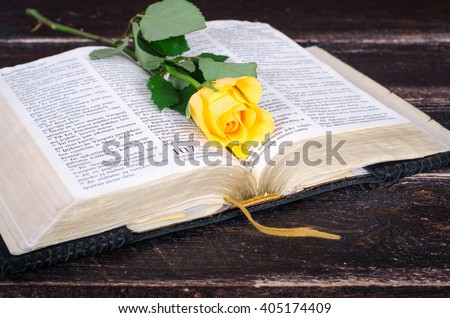 Yellow rose on top of an old Bible