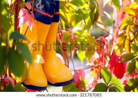 yellow rubber boots and colorful autumn leaves. natural background - stock photo