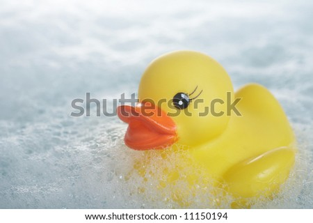Yellow rubber duck floating in suds in bathtub - stock photo