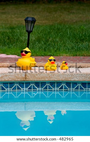 Yellow rubber ducks family in sunglasses reflected in  the pool - stock photo