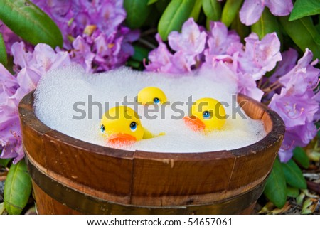 yellow rubber ducks in old tub - stock photo