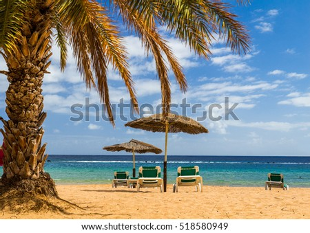 Yellow sand beach with lounge chairs and umbrellas in Tenerife Island, Spain
