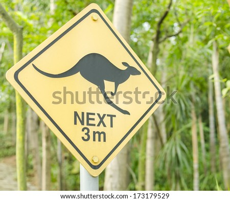 Yellow sign with a kangaroo - stock photo